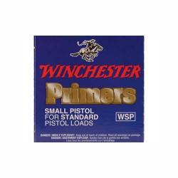 Winchester small pistol